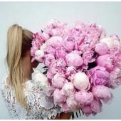 Купить розовые пионы