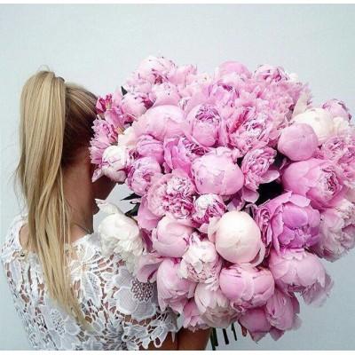 51 розовый пион