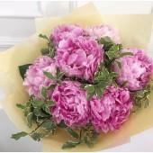 Розовая семерка