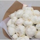 Купить белые пионы в Москве с доставкой